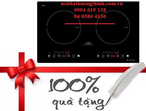 Khuyến mại bếp từ cực lớn đón mừng năm mới