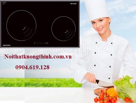 Những lý do bạn nên lựa chọn bếp từ Dmestik NA 772IB