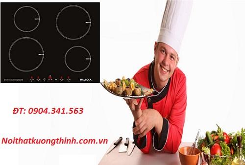 Tại sao bạn nên chọn bếp từ Malloca MH 04I