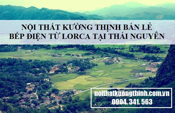 địa chỉ mua bếp điện từ Lorca tại Thái Nguyên