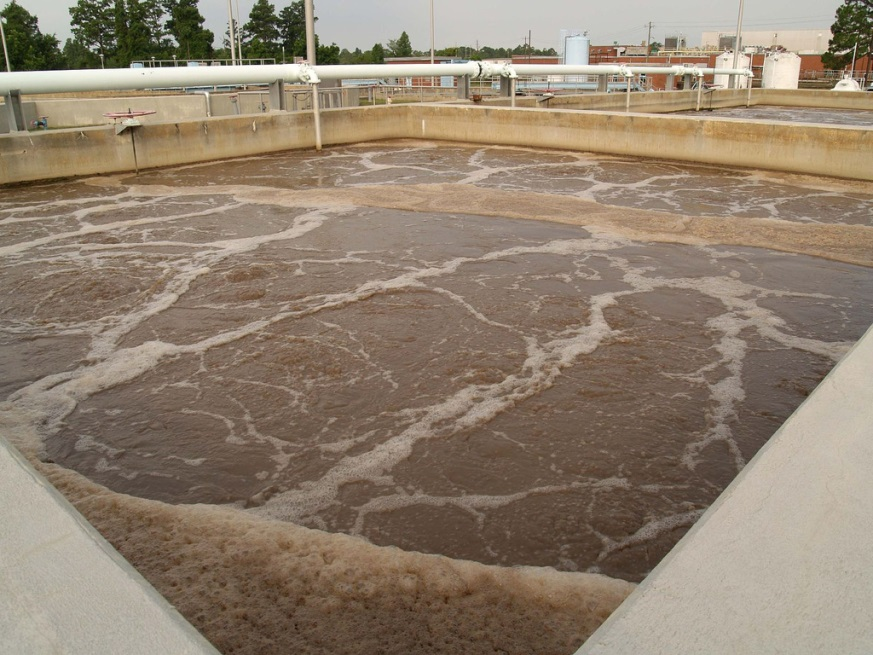 bùn vi sinh trong xử lý nước thải
