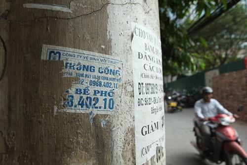quảng cáo hút bể phốt dán trên cột điện