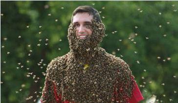 Để hơn 20.000 con ong độc bâu lên cơ thể