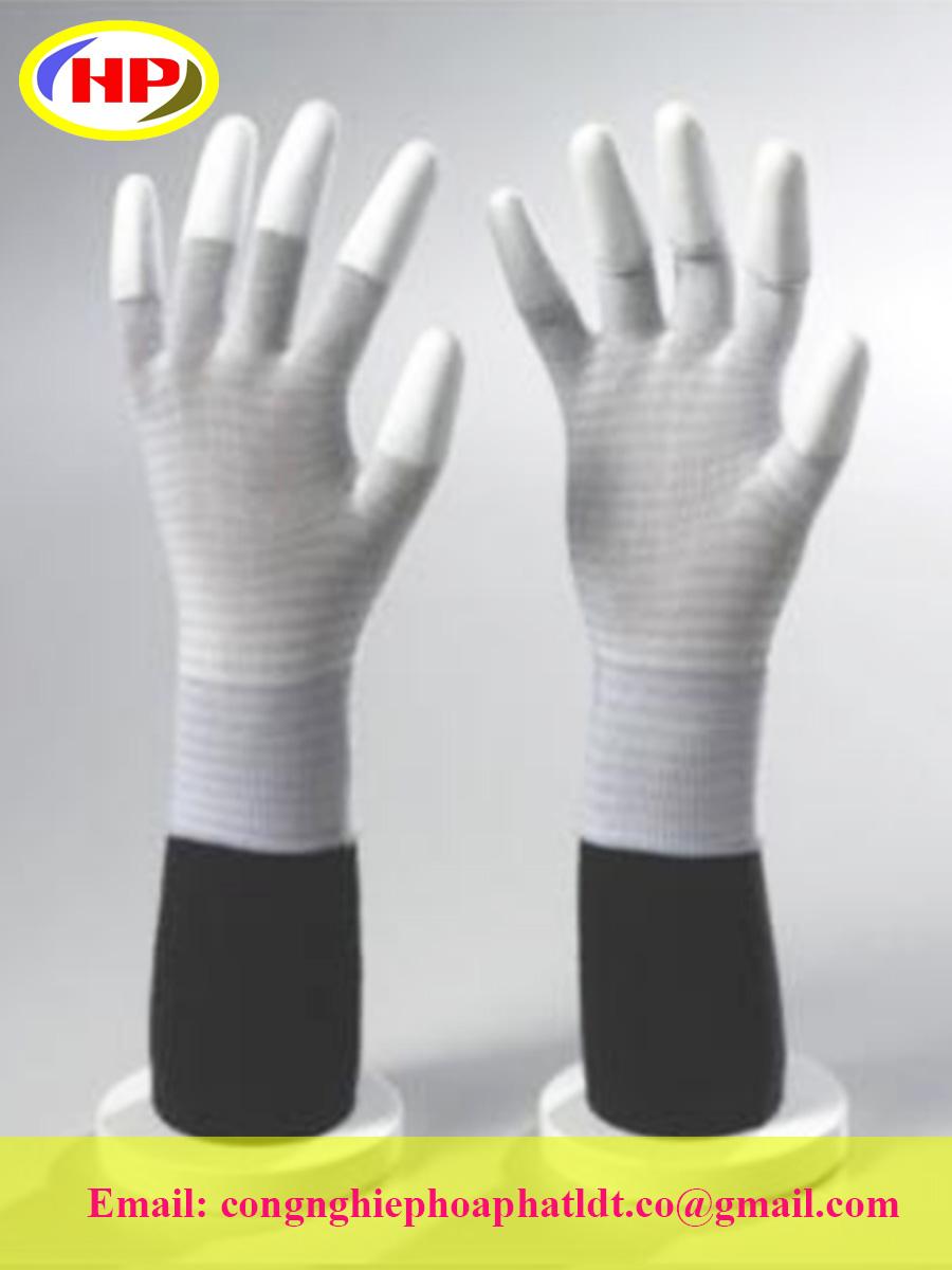 Găng tay phủ Poly 2