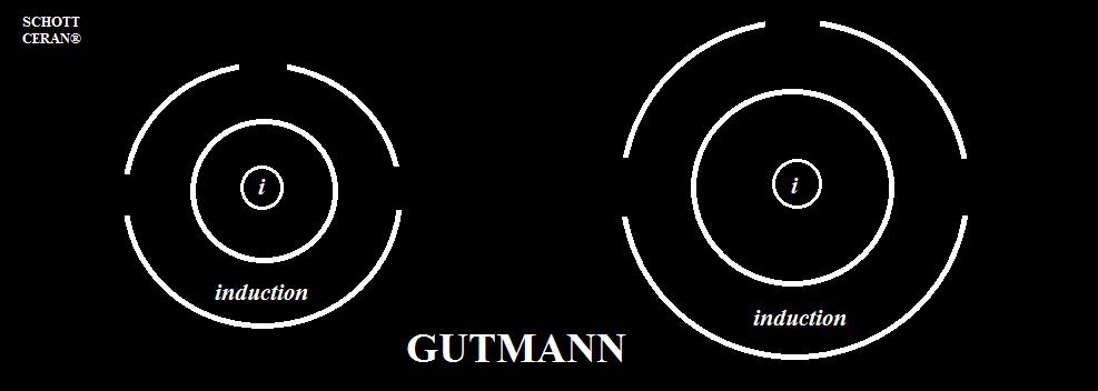 Giao diện vùng nấu của Bếp từ Munchen G60