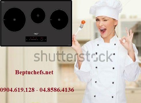 Xuất xứ của bếp từ Chefs EH IH533