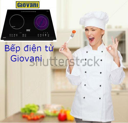 Các thương hiệu bếp điện từ uy tín nhất tại thị trường Việt Nam