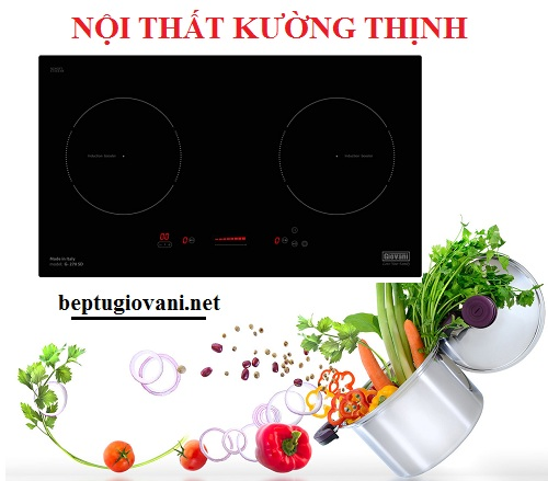 Có nên mua bếp từ Giovani G 270SD không?