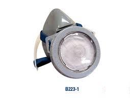 Mặt nạ lọc bụi B223-1