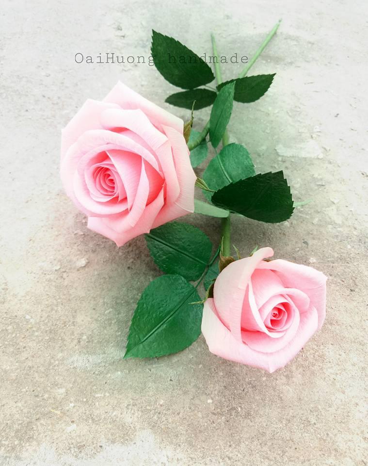 hoa hong gia bang giay