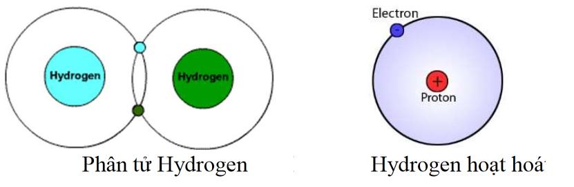 Hydrogen tồn tại ở dạng phân tử
