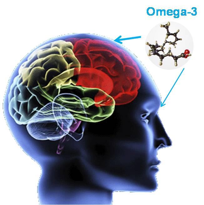 Omega 3 DHA giúp phát triển thần kinh và thị lực
