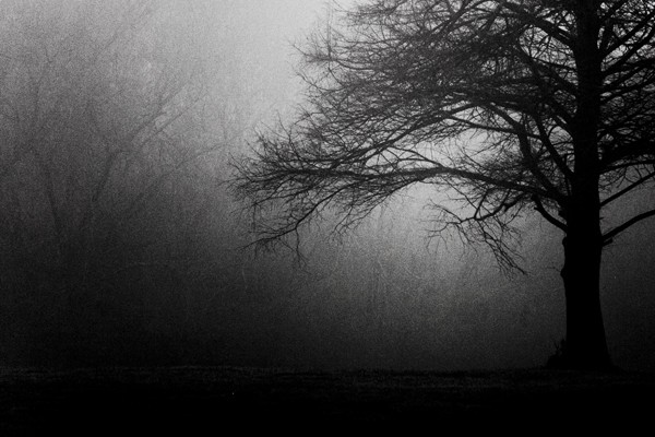 """""""Cô gái sương mù"""" và những góc ảnh cổ tích 9"""