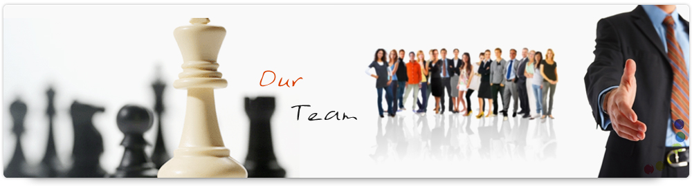 our-SEO-team