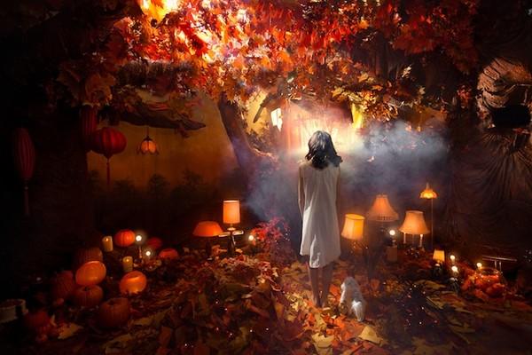 Cuộc phiêu lưu của cô gái nhỏ trong thế giới màu cam rực rỡ 4