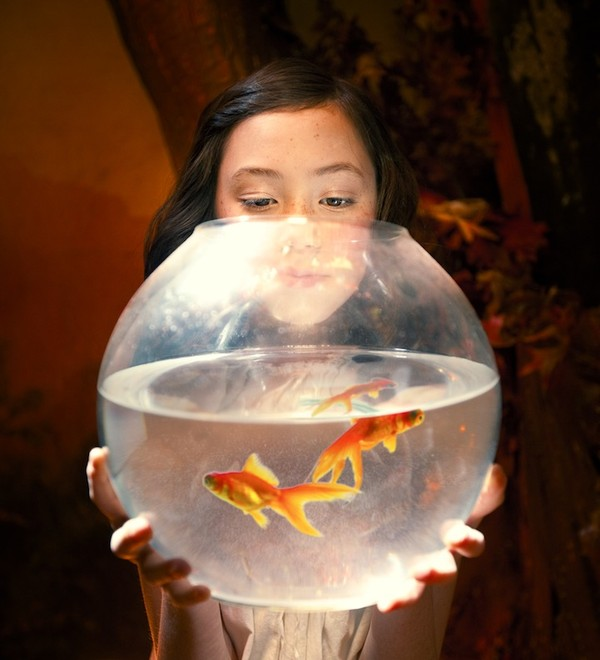 Cuộc phiêu lưu của cô gái nhỏ trong thế giới màu cam rực rỡ 11
