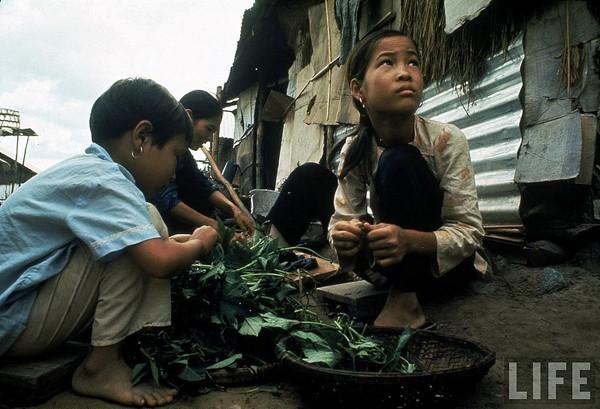 Những bộ ảnh cảm động về nghị lực của người Việt khiến hàng triệu trái tim thổn thức 10