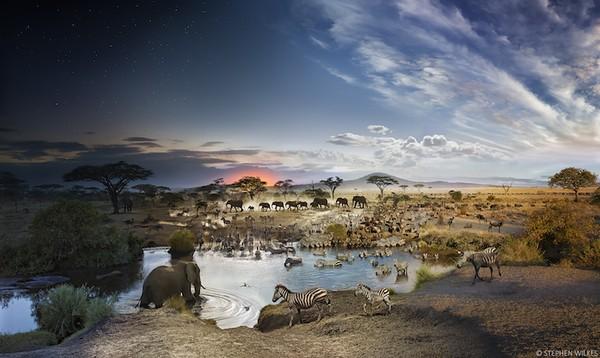 Bộ ảnh phong cảnh hòa quyện giữa ngày và đêm đầy ấn tượng