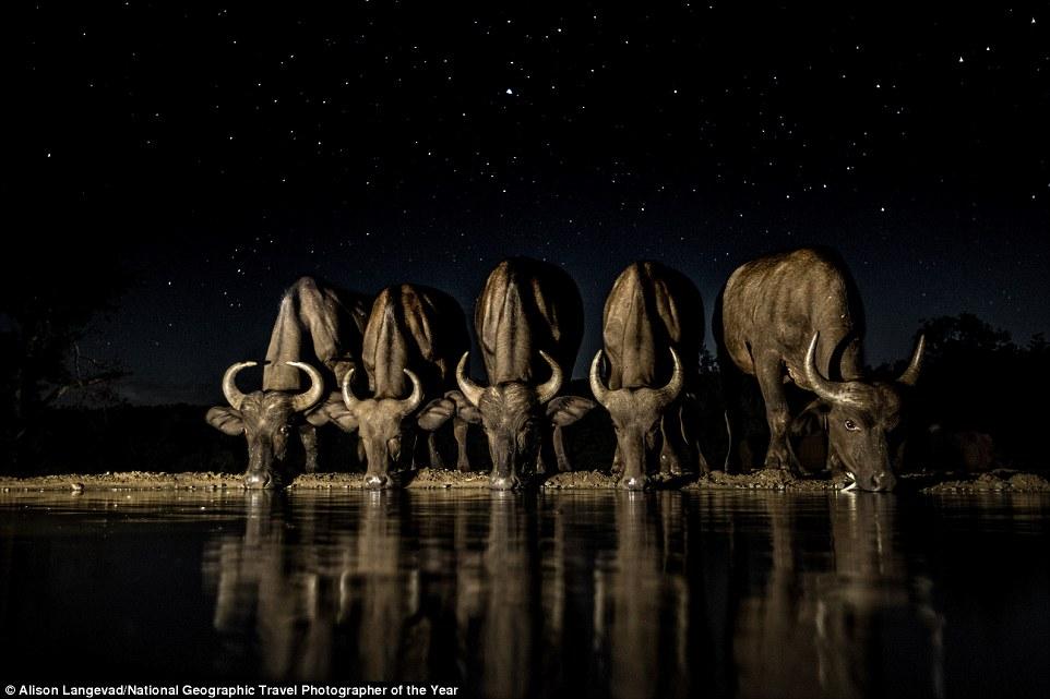Cuộc thi hình ảnh du lịch đẹp 2016 của National Geographic