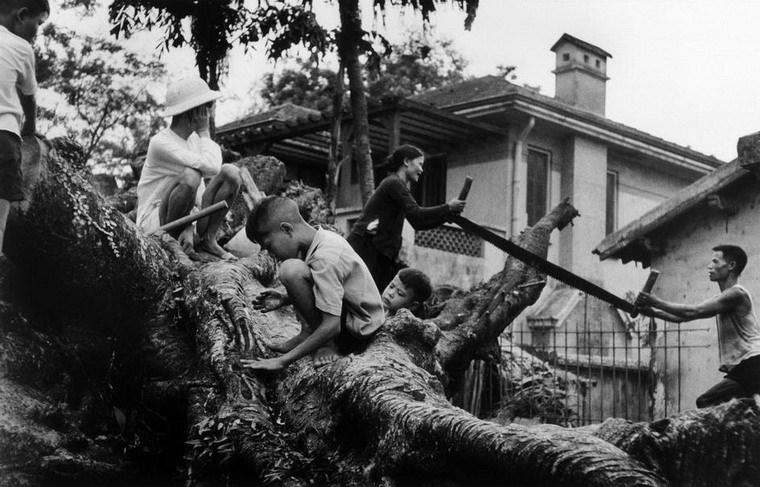 Những bức ảnh trước khi chết của Robert Capa tại Việt Nam năm 1954