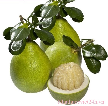 Thuốc giảm cân lishou hoa quả