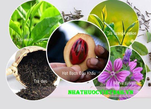 herbalife trà thảo mộc giảm cân