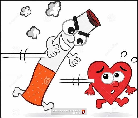 Phá huỷ tim mạch