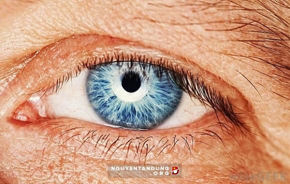 Thuốc lá huỷ hoại mắt