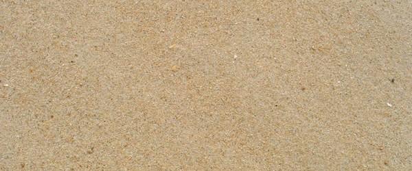 Đại lý, cửa hàng cát xây tô giá rẻ tại tphcm