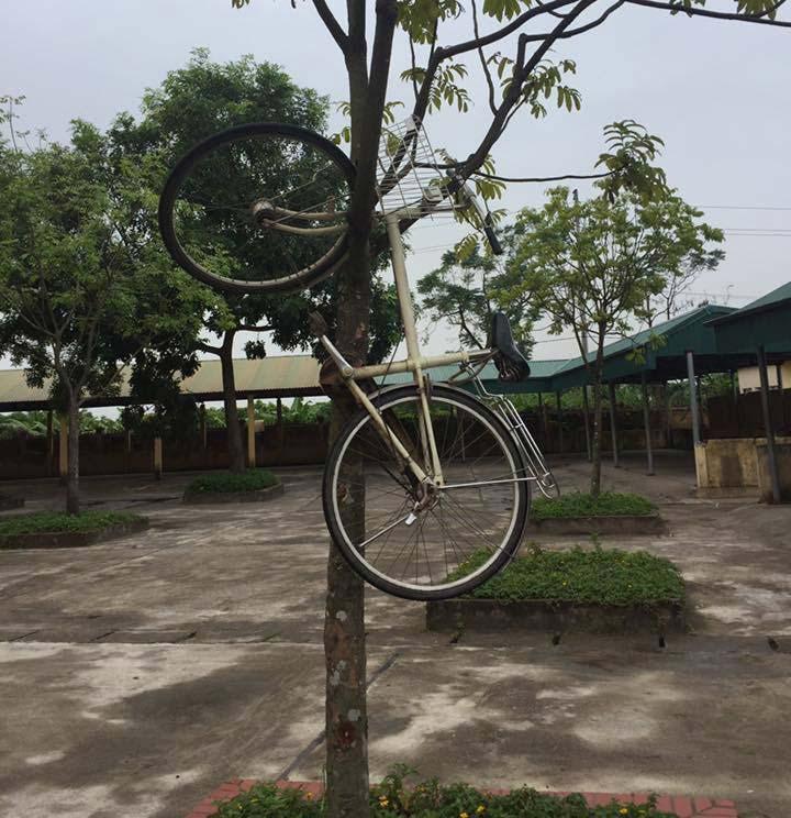Nhìn chiếc xe đạp bị treo ngược thật là khổ sở