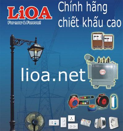 Lioa chinh hang chiet khau cao