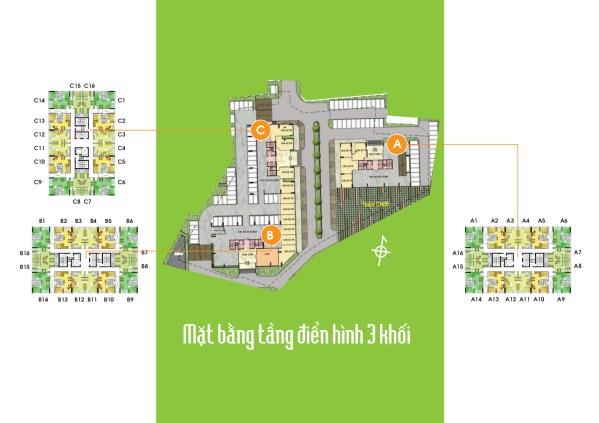 Mặt bằng tổng quan về dự án Lotus Apartment -  căn hộ Sen Hồng