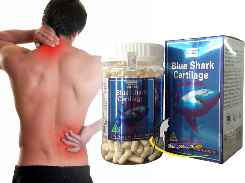 Sụn Vi Cá Mập Blue Shark Cartilage Costar 365 viên