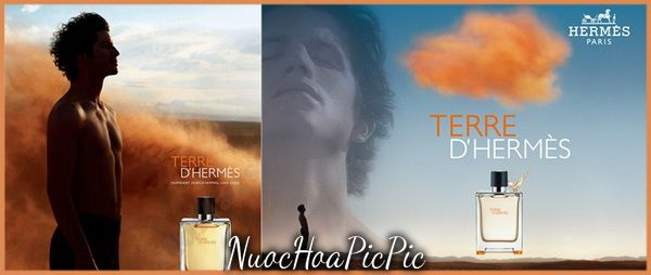 Hermes Terre d'Hermes - Nuoc Hoa Pic Pic