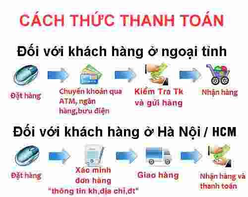hinh thuc thanh toan standa.net.vn