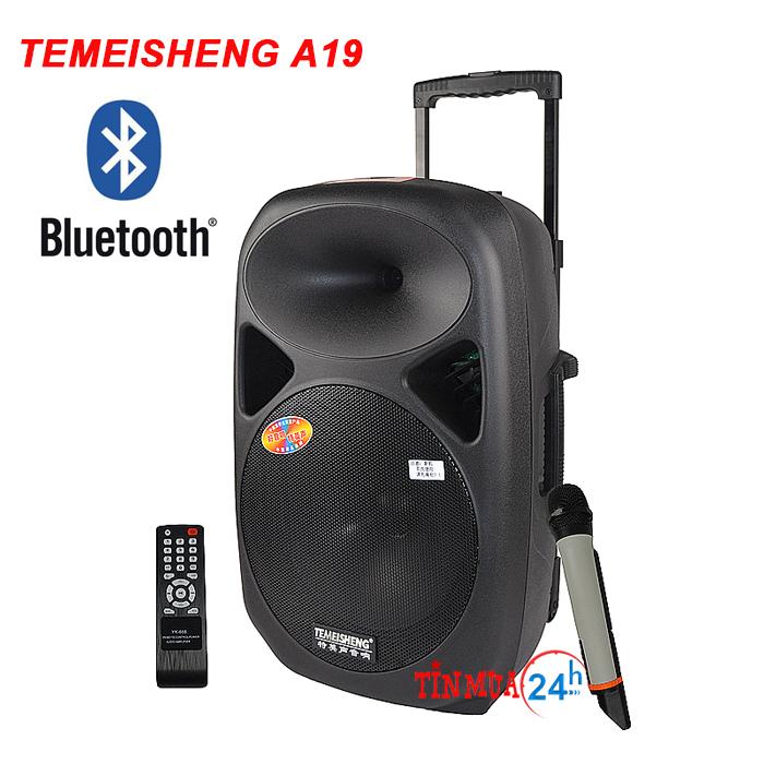 Loa di động Temeisheng A19 – loa vali kéo hát karaoke công suất lớn