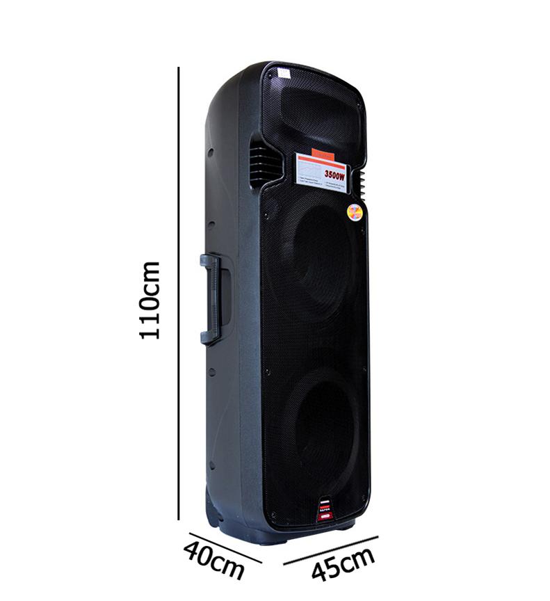 Loa vali kéo di động Temeisheng 2 bass A65 – loa công suất lớn