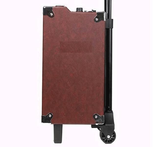 Loa vali kéo Temeisheng Q8 Bluetooth