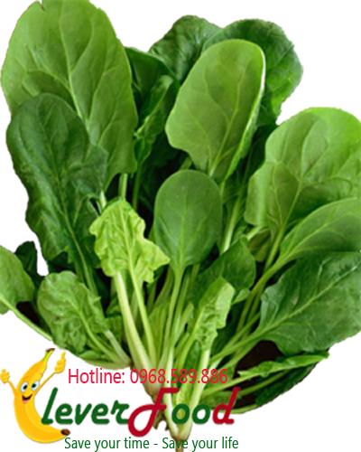 Rau cải bó xôi hữu cơ