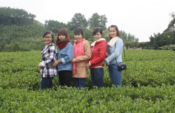 vùng trà Tân Cương Thái Nguyên