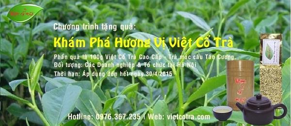 Công ty chè Thái Nguyên - Việt Cổ Trà