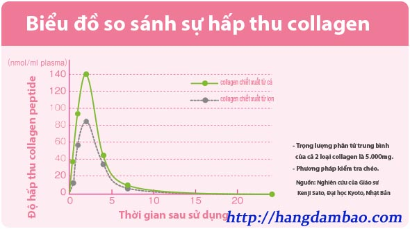bieu-do-so-sanh-luong-collagen