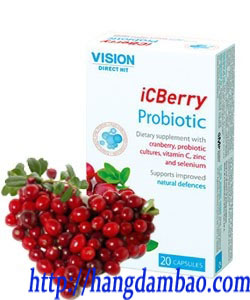 icberry-vision