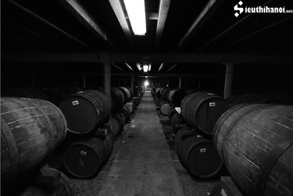 nhà máy rượu Johnnie walker