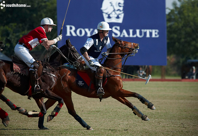 royal salute 21 world polo