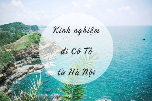 di co to tu ha noi