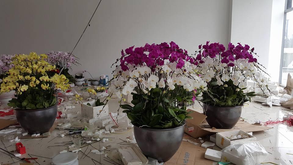 Shop hoa tươi giá rẻ nhất - 6