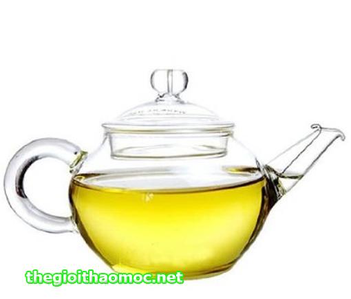 ấm trà thủy tinh 250ml