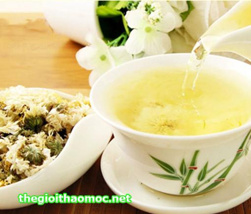 Kết quả hình ảnh cho trà bạch cúc