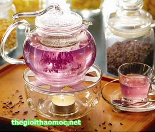 Kết quả hình ảnh cho trà lavender